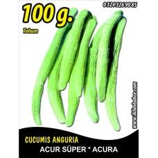 Acur Tohumu Kerem (Beyaz) - Tnk 100 g