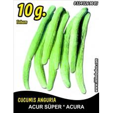 Acur Tohumu Kerem (Beyaz) - 10 g (~ Takribi 150 Tohum)