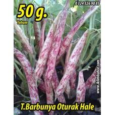 Barbunya Tohumu Oturak Hale - 50 g.