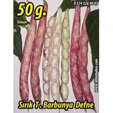 Barbunya Tohumu Sırık Defne - 50 g