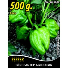Biber Tohumu Antep Acı Dolma 500  g