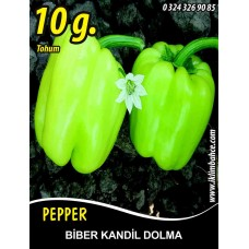 Biber Tohumu Kandil Dolma - 10 g (~ Takribi 800 Tohum)