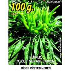 Biber Tohumu Toros Yukarı Bakan Yeşil Süs - 100g