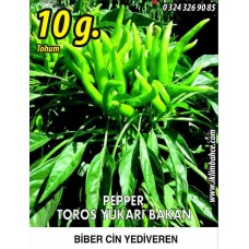 Biber Tohumu Toros Yukarı Bakan Yeşil Süs - 10g  (~ Takribi 800 Tohum)