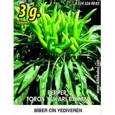 Biber Tohumu Toros Yukarı Bakan Yeşil Süs - 3 g (~ Takribi 240 Tohum)