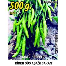 Biber Tohumu Aşağıbakan Yeşil Süs - 500g