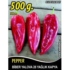 Biber Tohumu Yalova Yağlık 28 - 500 g