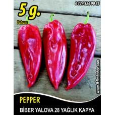 Biber Tohumu Yalova Yağlık 28 / - 5 g (~ Takribi 400 Tohum)