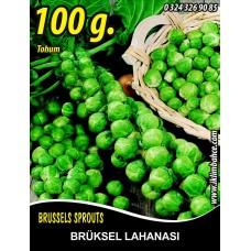 Brüksel Lahanası Tohumu 100 g.