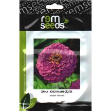 Zinnia Çiçek Tohumu (Kirli Hanım Çiçeği) - ZINNIA (~ Takribi 25 Tohum)