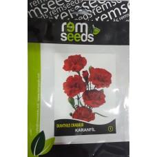 Karanfil Çiçek Tohumu 1 - DIANTHUS CHABAUD (~ Takribi 50 Tohum)