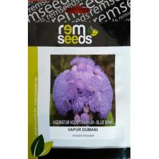 Vapur Dumanı Çiçeği Tohumu - AGERATUM HOUSTONIANUM (~ Takribi 50 Tohum)