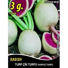 Turp Tohumu Çin Turpu 3 g (~ Takribi 270 Tohum)