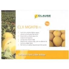 Kavun Tohumu Clause CLX MGH78 F1 Hibrit 1000 Adet Tohumluk
