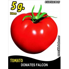 Domates Tohumu Falcon - 5 g (~ Takribi 750 Tohum)