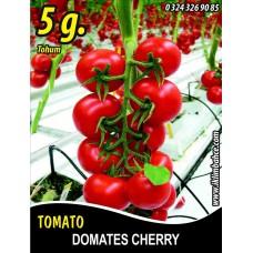 Domates Tohumu Cherry - 5g (~ Takribi 750 Tohum)