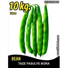 Fasulye Tohumu Bora ( Oturak ) - 10 KG