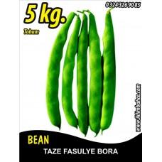 Fasulye Tohumu Bora ( Oturak ) - 5 KG