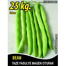 Fasulye Tohumu Magen ( Oturak ) - 25 KG