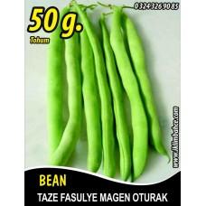 Fasulye Tohumu Magen ( Oturak ) - 50 g  (~ Takribi 150 Tohum)
