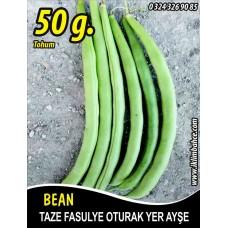 Fasulye Tohumu Amerikan - 50 g (~ Takribi 150 Tohum)