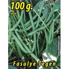 Fasulye Tohumu Tegen ( Oturak ) 100g