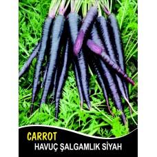 Havuç Tohumu Şalgamlık Siyah - 25g (~ Takribi 10000 Tohum)