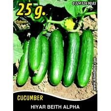Hıyar Tohumu Salatalık Beith Alpha - 25g (~ Takribi 500 Tohum)