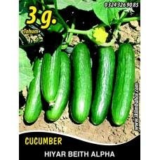 Hıyar Tohumu Salatalık Beith Alpha - 3 g (~ Takribi 90 Tohum)
