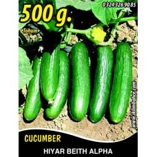 Hıyar Tohumu Salatalık Beith Alpha - 500 g
