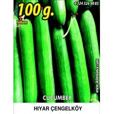 Hıyar Tohumu Salatalık Çengelköy - 100g