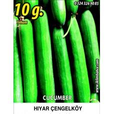 Hıyar Tohumu Salatalık Çengelköy - 10 g (~ Takribi 300 Tohum)