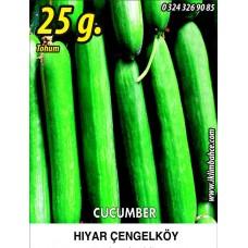 Hıyar Tohumu Salatalık Çengelköy - 25g (~ Takribi 500 Tohum)
