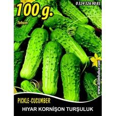 Hıyar Tohumu Salatalık Kornişon Turşuluk - 100 g