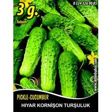 Hıyar Tohumu Salatalık Kornişon Turşuluk - 3 g  (~ Takribi 60 Tohum)