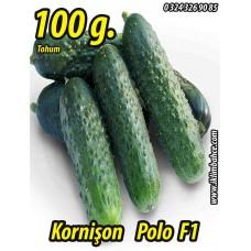 Hıyar Tohumu Salatalık Kornişon Turşuluk Hibrit Polo F1 - 100 g