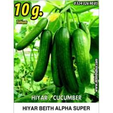 Hıyar Tohumu Salatalık Süper Beith Alpha - 10 g  (~ Takribi 300 Tohum)