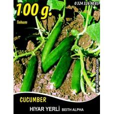 Hıyar Tohumu Salatalık Yerli - 100 g