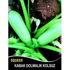 Kabak Tohumu Sakız Beyaz Dolmalık 1 KG