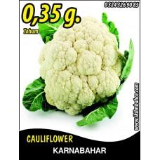 Karnabahar Tohumu Igloo 0,35 g (~ Takribi 875 Tohum)