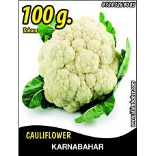 Karnabahar Tohumu Igloo Tnk 100g