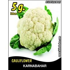 Karnabahar Tohumu Igloo 5 g (~ Takribi 850 Tohum)