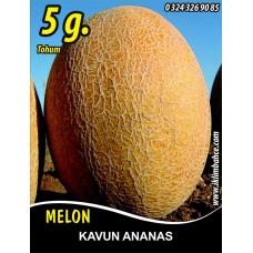 Kavun Tohumu Ananas - 5 g. (~ Takribi 70 Tohum)