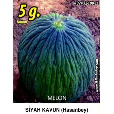 Kavun Tohumu Hasan Bey 1 /- 5g (~ Takribi 70 Tohum)