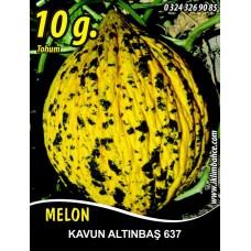 Kavun Tohumu Kırkağaç 637 /- 10 g (~ Takribi 140 Tohum)