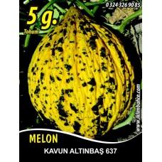 Kavun Tohumu Kırkağaç 637 /- 5 g (~ Takribi 70 Tohum)