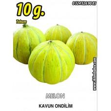 Kavun Tohumu On Dilim 10 g. (~ Takribi 140 Tohum)