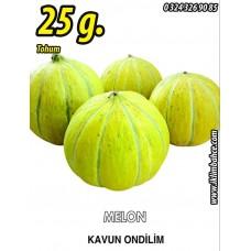 Kavun Tohumu On Dilim - 25 g. (~ Takribi 350 Tohum)