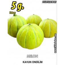 Kavun Tohumu On Dilim  5 g  (~ Takribi 70 Tohum)