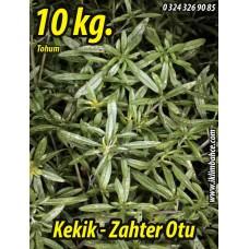 Kekik Tohumu Zahter Satureja hortensis L - 10 KG